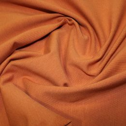 Organic Jersey Fabric Plain | Rust