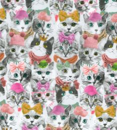 Organic Jersey Fabric | Top Cat