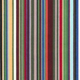 Cotton Print Fabric Multi Stripe | Shades 3