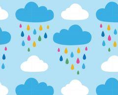 Stuart Hillard's Hot Air Balloon   Rain Clouds