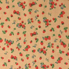 Natural Lifestyle Fabric 2