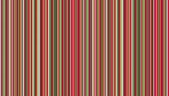 Twelve Days of Christmas Fabric   Festive Multi Stripe
